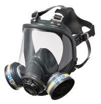 Silvershield Silicone Full Face Mask